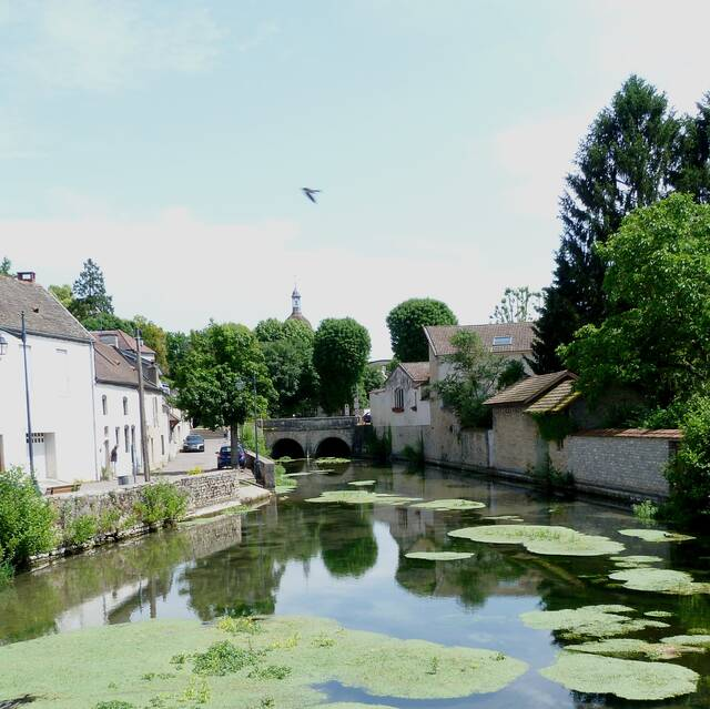 La Bouzaize in Beaune
