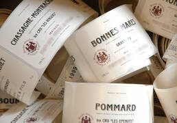 Burgundy wine appellations