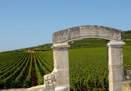 "Burgundy's ""Climats"" – inscribed as UNESCO World Heritage"