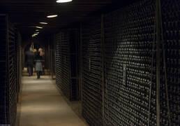 Wineries in Burgundy near Beaune