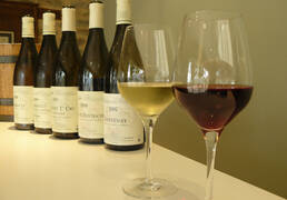 The Finest Wines of Burgundy