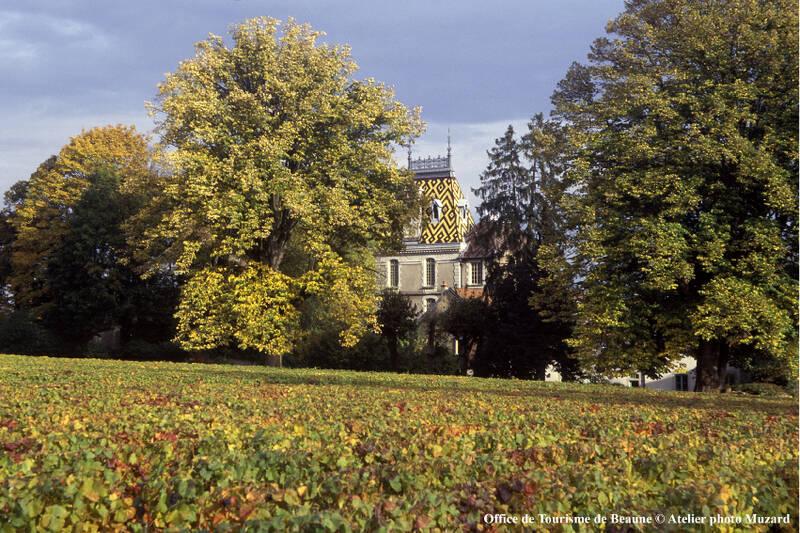 Château de Corton - Aloxe-Corton