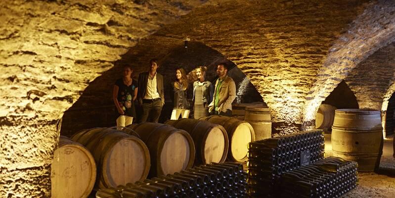 Caves Patriarche Père & Fils, Beaune, Burgundy, France. Cellar © Studio Piffaut