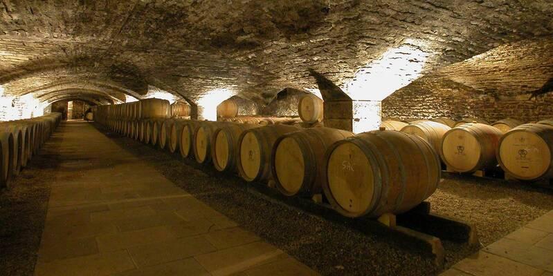 Cellar © Château de Chassagne