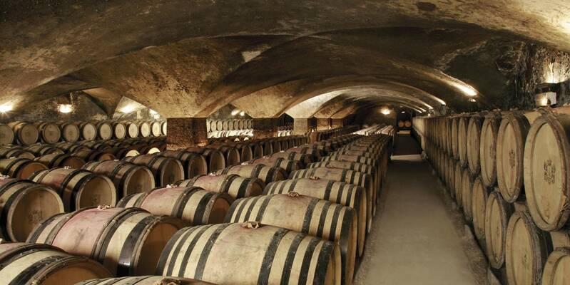 Château de Meursault cellar - Burgundy wine