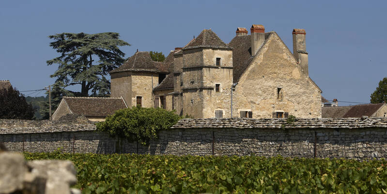 The Château de la Velle in Meursault