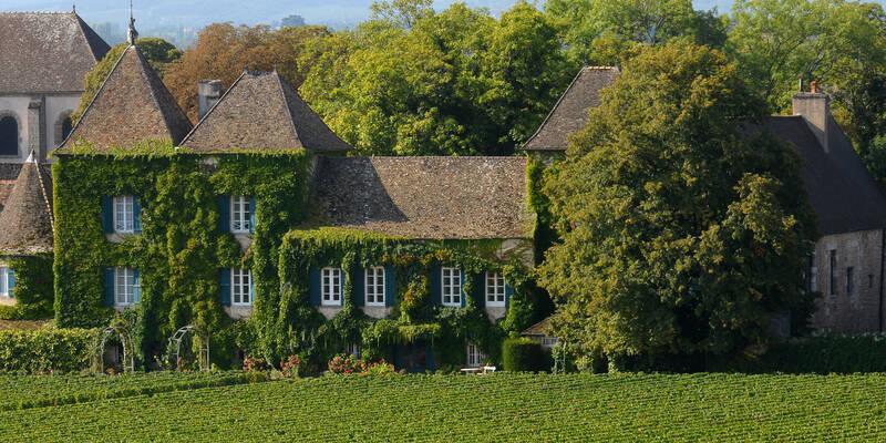 Burgundy style house