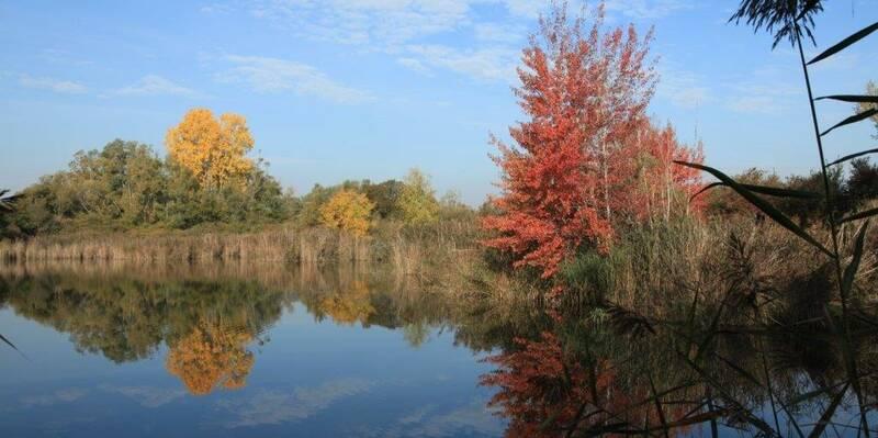 Etang automne © Beaune Côte & Sud