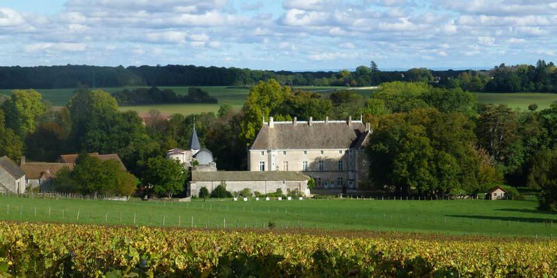 Vineyard ©Château de Germolles