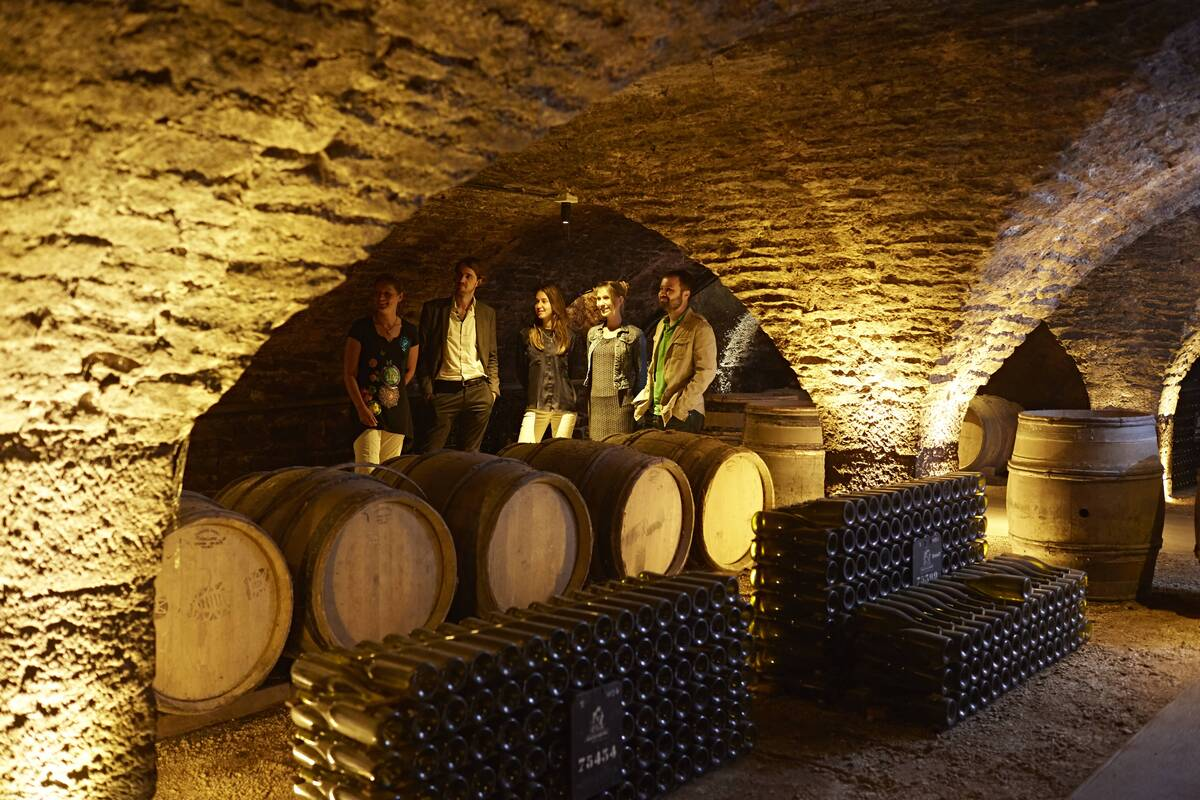 caves patriarche beaune the official beaune travel guide. Black Bedroom Furniture Sets. Home Design Ideas