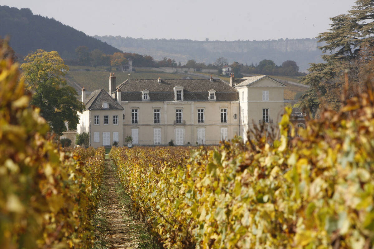 Burgundy Wineries The Official Beaune Travel Guide