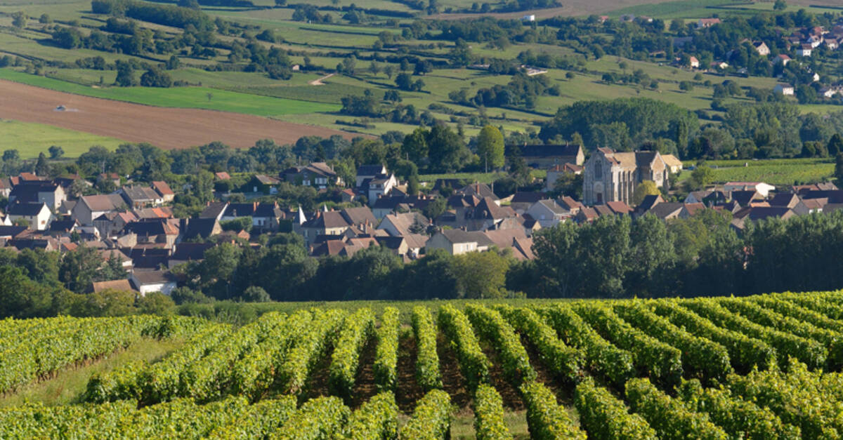 Discover the wine villages around beaune in burgundy - The splendid transformation of a vineyard in burgundy ...