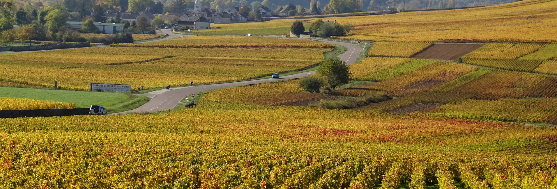 Hiking, walking, cycling in Burgundy. Maps, routes.Beaune, Meursault, Nolay, Chagny, Savigny-les-Beaune, Santenay.
