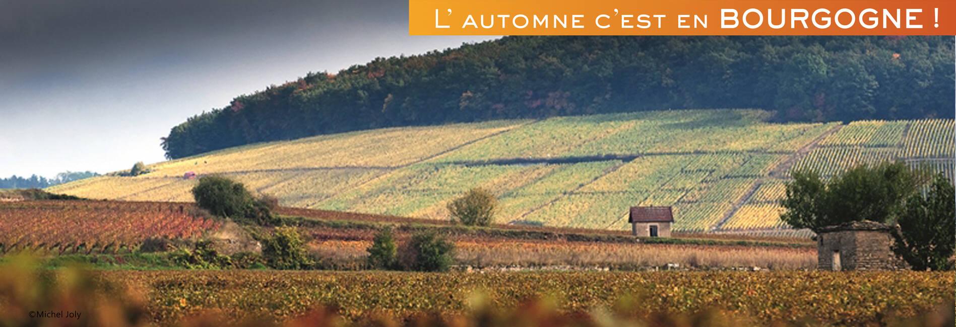 Climats Bourgogne Beaune