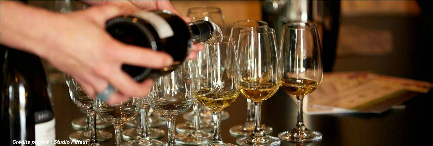 Wine Tasting in Beaune, Meursault, Chagny, Nolay, Santenay, Savigny-les-Beaune