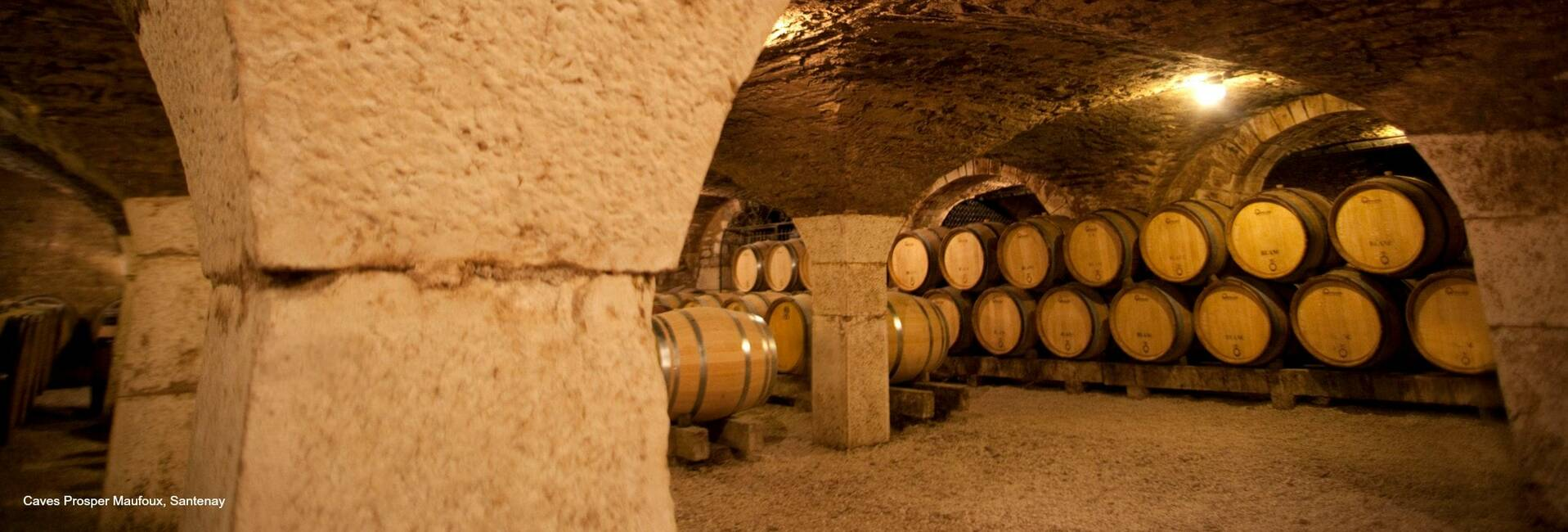 Cellar Tours in Beaune, Meursault, Santenay, Nolay, Chagny in Burgundy