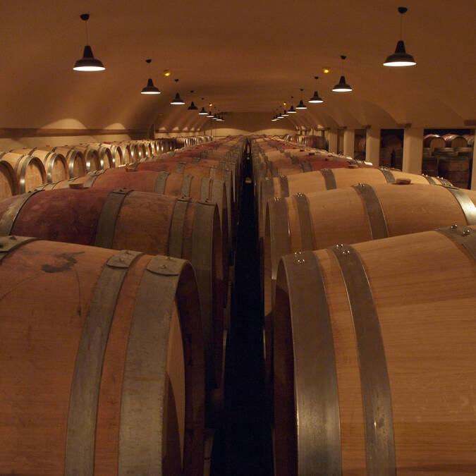 Cellars - Epicurean Beaune