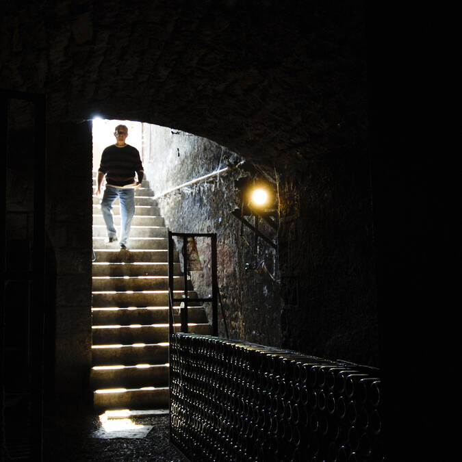 Down to the cellar