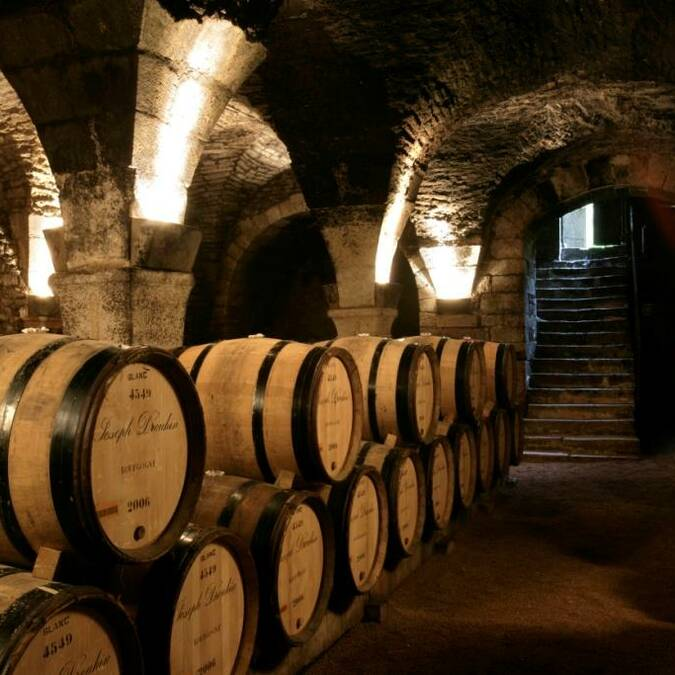 Cellars - Beaune