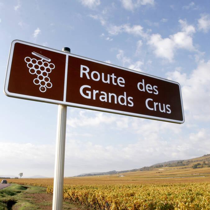 The Route des Grands Crus © Ecrivin