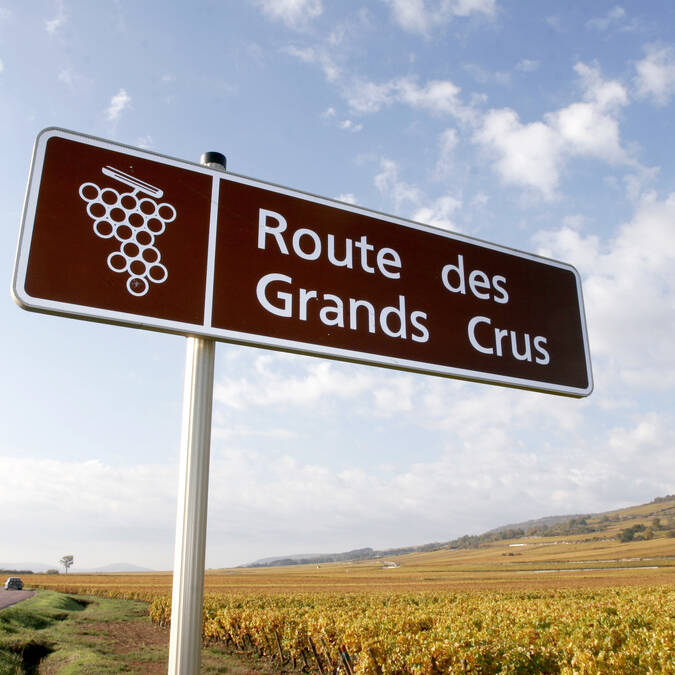 The Route des Grands Crus © Ecrivin