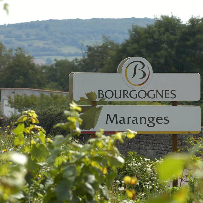 """Maranges, """"Voie des Vignes"""" Cycle route © BIVB"""